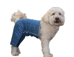 Mozzie Pants Original  Dog Pants (Ditch the cone with full coverage, reusable dog diaper)