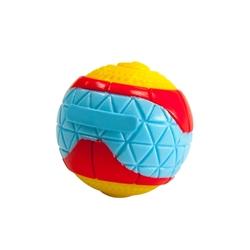 Squeakin' Whistler Ball Dog Toy