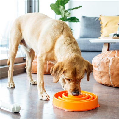 Fun Feeder Slo-Bowl - Orange