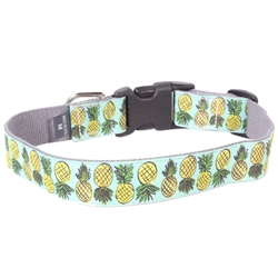 robinson crusoe ribbon collars