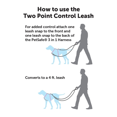 Two Point Control Leash