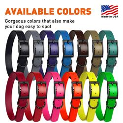 Dogline Biothane Waterproof Dog Collar Strong Coated Nylon Webbing with Black Hardware Odor- Proof for Easy Care Easy to Clean High Performance Fits Small Medium or Large Dogs