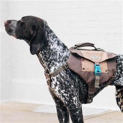 Denver Urban Pack Lightweight Urban Hiking Backpack for Dogs