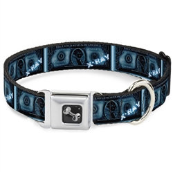 $1 Bill X-Ray Seatbelt Buckle Dog Collar and Lead by Buckle-Down