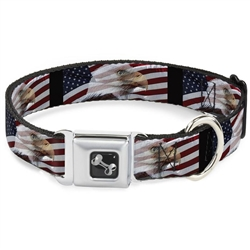 American Eagle Flags Seatbelt Buckle Dog Collar and Lead by Buckle-Down