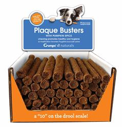 Plaque Busters with Pumpkin Spice 50 pack Bulk Displayer