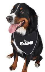 Shalom Bandana