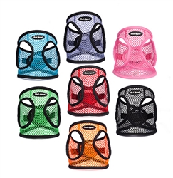 STARTER PACKAGE - 28 Netted EZ Wrap Step In Harnesses