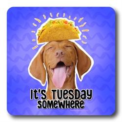 Taco Tuesday Coasters