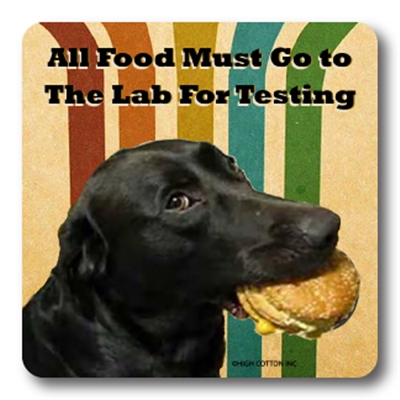 Lab For Testing Coaster