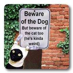 Beware Dog Cat Weird Coasters