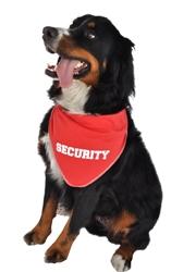 Security Bandana