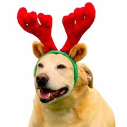 Outward Hound Christmas Holiday Antlers