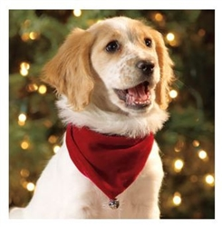 Outward Hound Holiday Bandana for Dogs- While Supplies Last