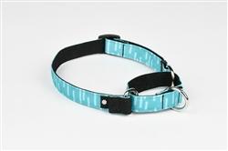 Aqua Martingale Dog Collar
