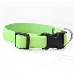 'Gator' Green Velvet Collars & Leashes