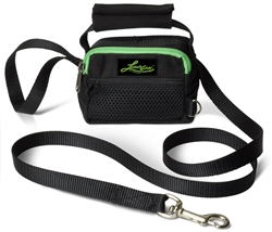 LeashGear 3 in 1 Leash, Poop Bag Dispenser, and Storage