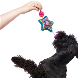Multicolor Star Dog Toy