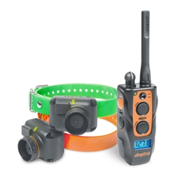 2702T&B 2-Dog Remote Training and Beeper System