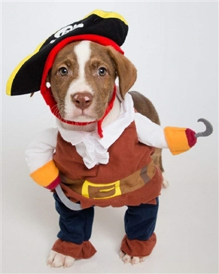 Pet Krewe Pirate Costume With Arms And Hat