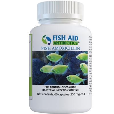 Amoxicillin Capsules 250mg (60 Capsules) - Antibiotic
