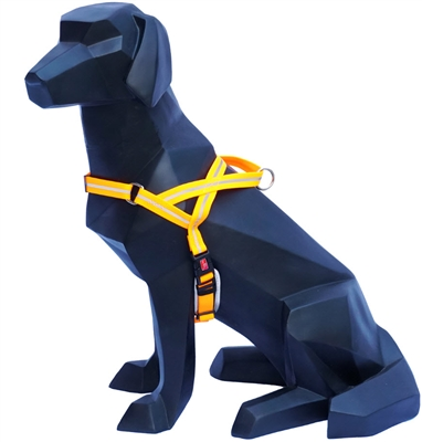 Reflective / Weatherproof / Padded Harnesses