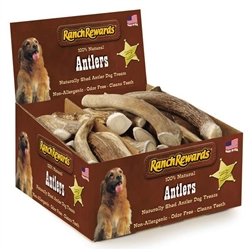 Ranch Rewards® Deer Antler Treat Display - 36 pieces