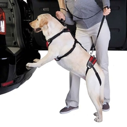 Total Pet Health™ Lift & Go Leads - Red