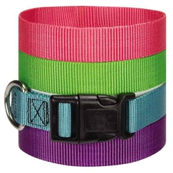 Guardian Gear® Adjustable Dog Collars