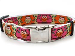 H'Owl Pink & Pumpkin Collar Silver Metal Buckles