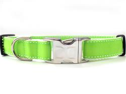 Preppy In Lime Collar Silver Metal Buckles