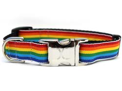 Rainbow Collar Silver Metal Buckles