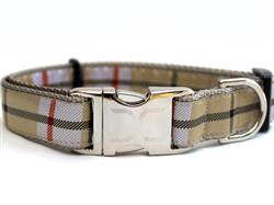 Barkley Collar Gold Metal Buckles