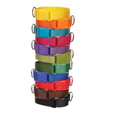 Casual Canine Nylon Collars and Leads