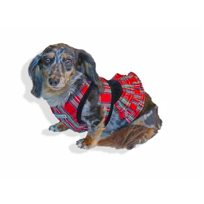 Holiday Tartan Harness