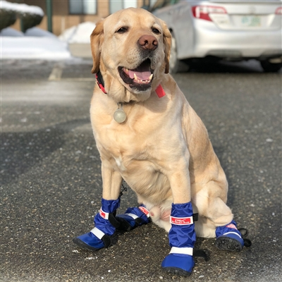 Walkin' All Weather Boots