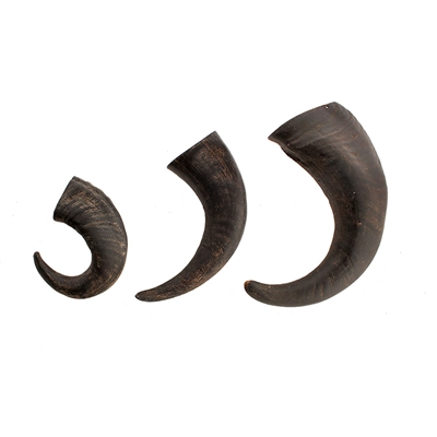 BEST SELLER! Wild Eats® Small Water Buffalo Horn (NOW AVAILABLE IN 30 PIECE PDQ COUNTER DISPLAY #70604)
