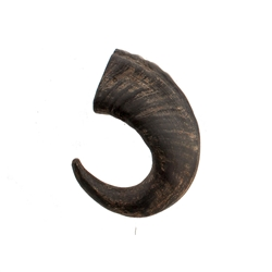 Wild Eats® Small Water Buffalo Horn