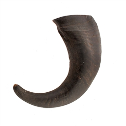 Wild Eats® Large Water Buffalo Horn