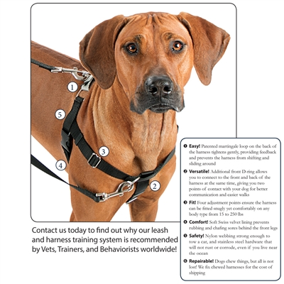 ISO Starter Package for Freedom Harness Training System includes 20 harnesses AND leashes