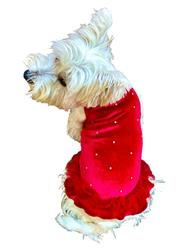 Twinkle Tutu Dress, Red Velvet