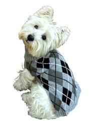 Edinborough Argyle Mockneck Sweater