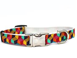 Block Party Bright Collar Gold Metal Buckles