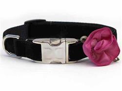 Carnation Orchid Velvet Collar - Rose Gold Metal Buckles