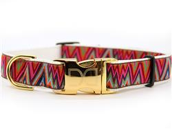 Ziggy Collar Gold Metal Buckles