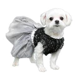 Camila Party Dress