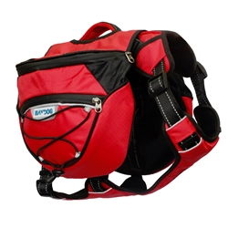 Saranac Backpack