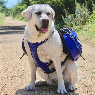 Saranac Backpack