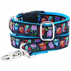 Monstro-City Essential Collars and Leads