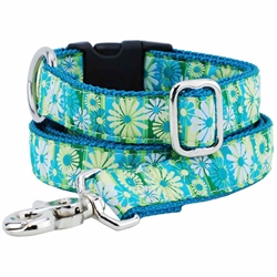 Daisy Stripe Essential Collars and Leads